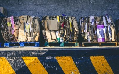 8 Ways Your Daily Lifestyle Contributes to Waste (And What to Do About It)
